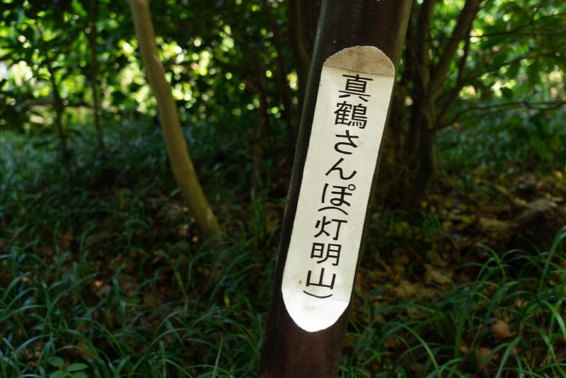 真鶴 森林浴遊歩道 灯明山