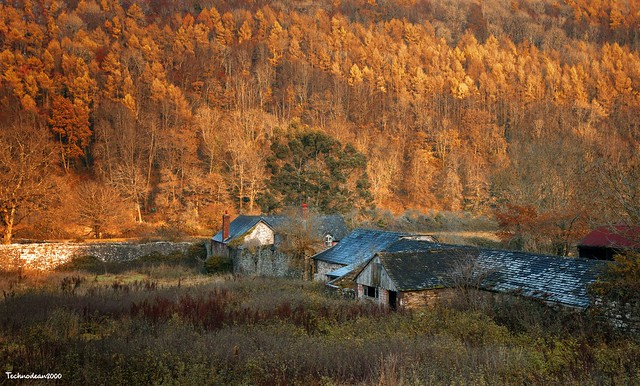 Autumn barn, Tintern