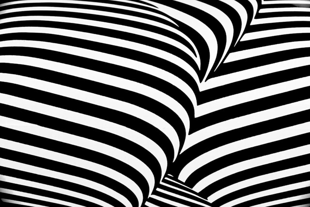 incoherent zebra 3
