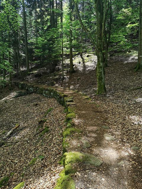 Joli sentier sur cette petite muraille de pierre