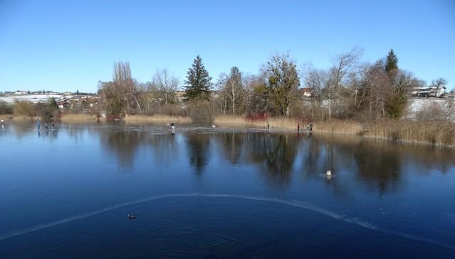 DSC02234 Ente im Wasser