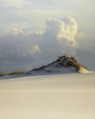 florida fortwaltonbeach okaloosaisland usa beach coast coastal dunes image landscape outdoors photo photograph sand sanddunes sunset f28 mabrycampbell august 2020 august152020 20200815campbellb4a3231pano 200mm ¹⁄₂₀₀₀sec iso100 ef200mmf28liiusm