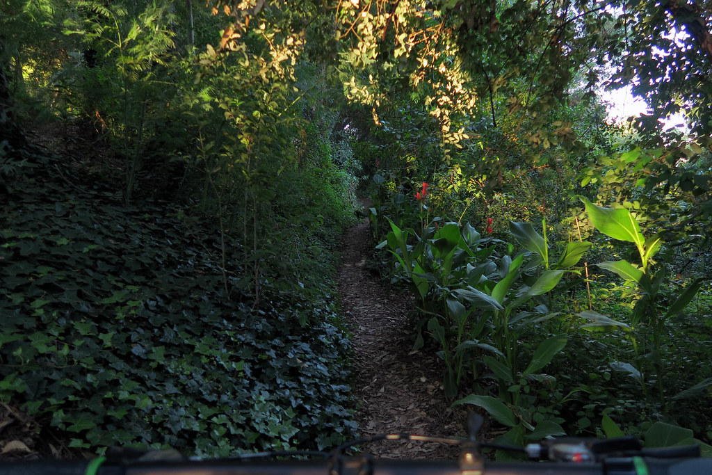 cerro sendero (2)
