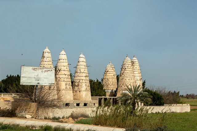 Armchair Traveling - Pigeon Towers in Egypt