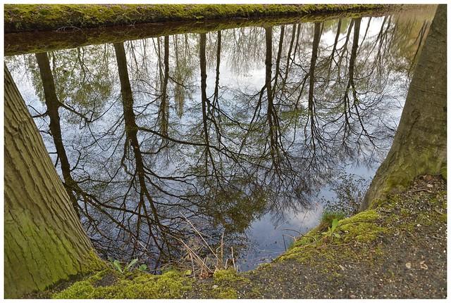 Loenen (Veluwe)