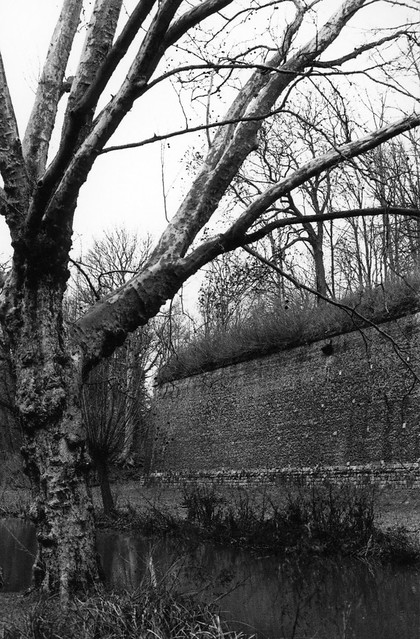 Promenade hivernale à la Citadelle