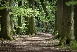 Gütersloh - sunday walk along the stream Lutter