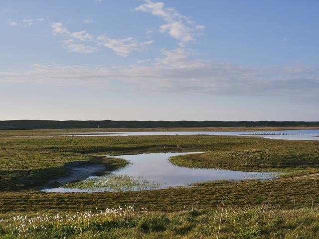 Landscape Noordervroon Westkapelle