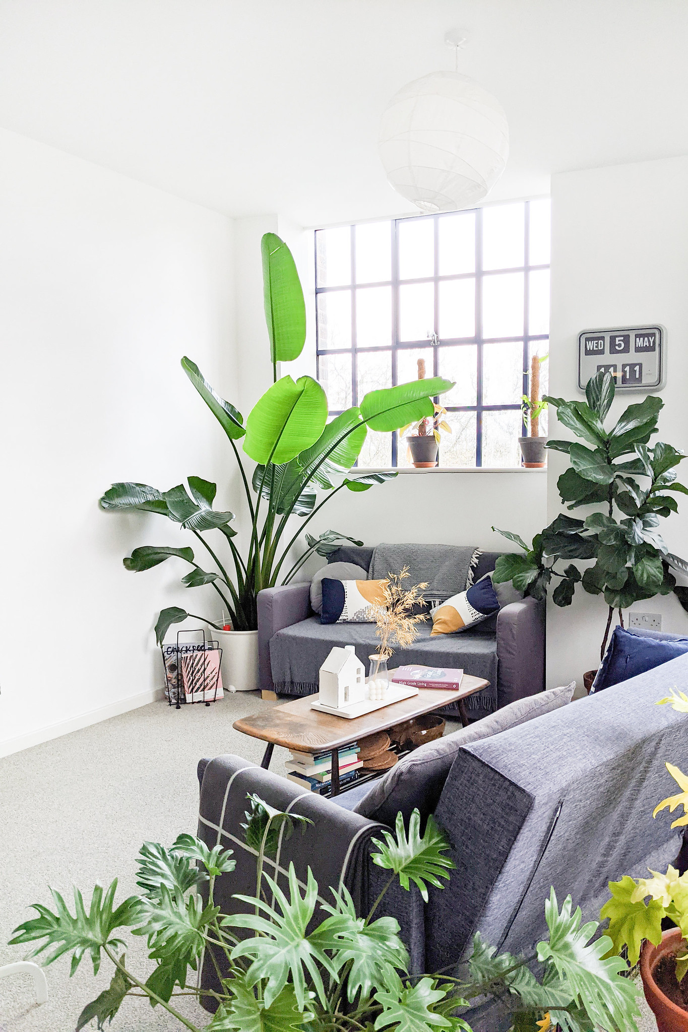 Decluttering Before A Move With Trussle