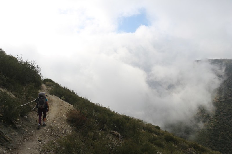 A swirling puff of cloud made an eddy in front of us
