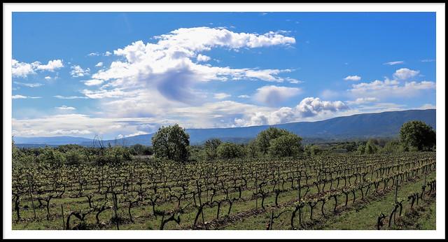 Des nuages de grand cru...