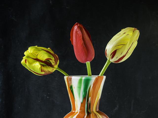 3 in a vase