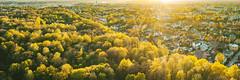 Fresh green | Kaunas aerial