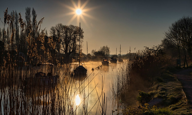 River Frome Moorings 2