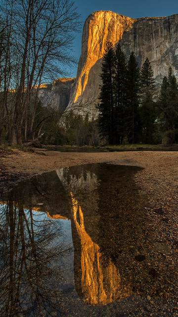 El Capitan Sunrise Pool Reflection, Yosemite 042221