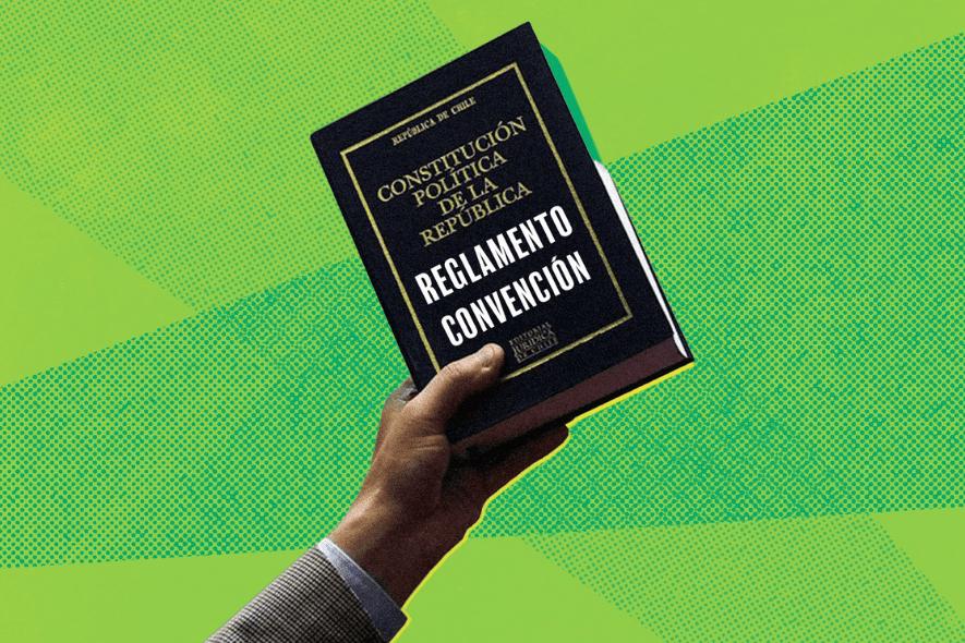 """¿Qué debería ofrecer un Constituyente que piensa una Constitución """"Verde""""?"""