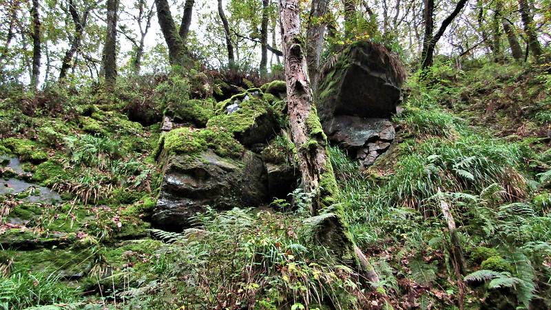 Town Wood Crags
