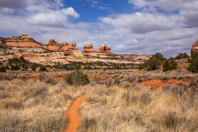 Upper Salt Creek Canyon Trail
