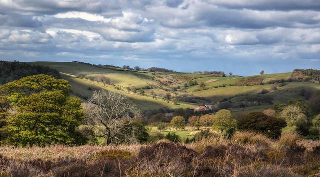 Shropshire landscape near the Long Mynd