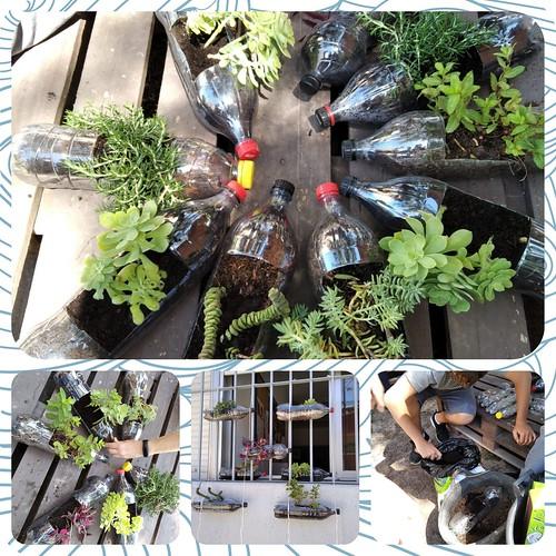 Reciclando en el huerto