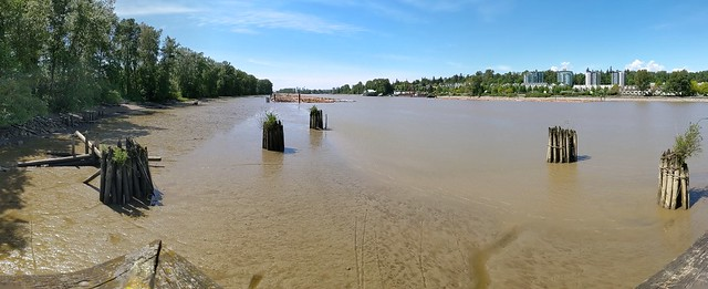 Tides out on the north arm of the Fraser River