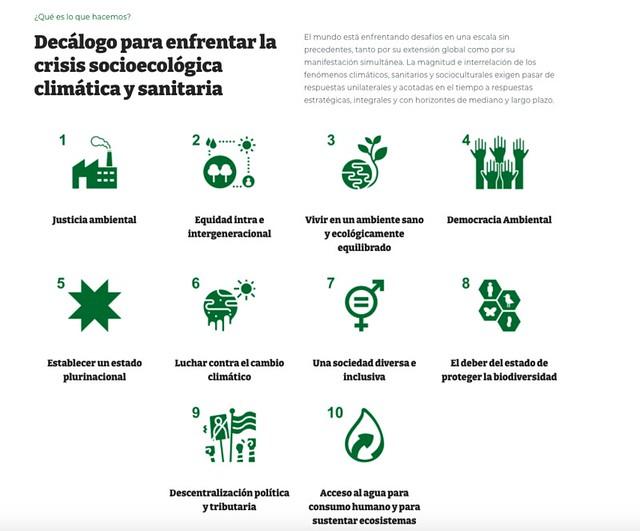 Decálogo para el Constituyente Verde