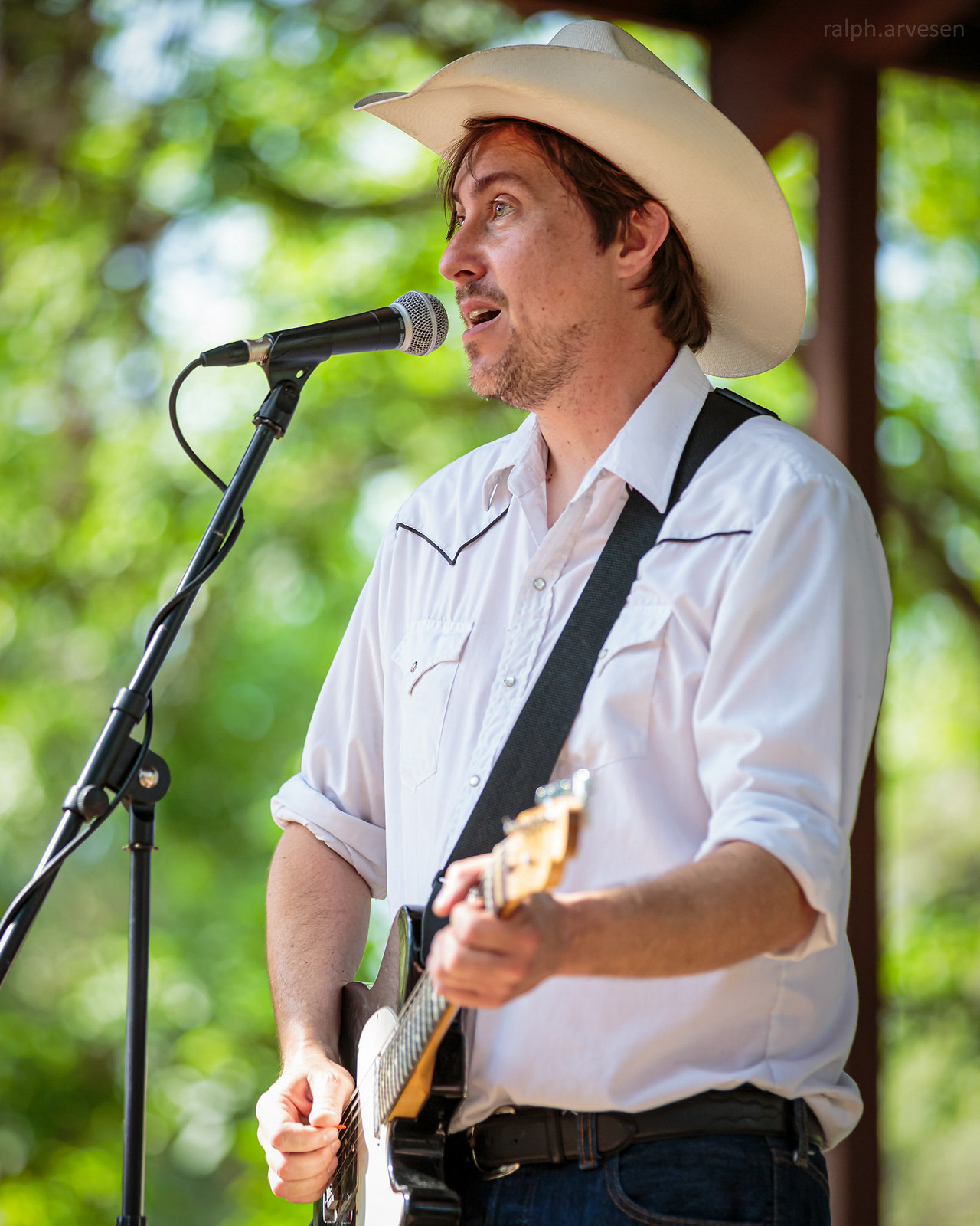 The Merles   Texas Review   Ralph Arvesen