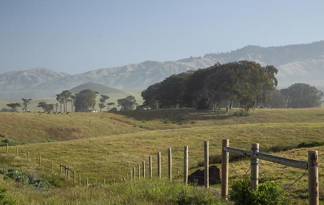 Morning Light, Old Coast Ranch