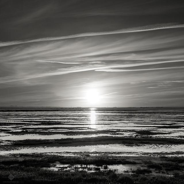 Frisian Sunrise #4