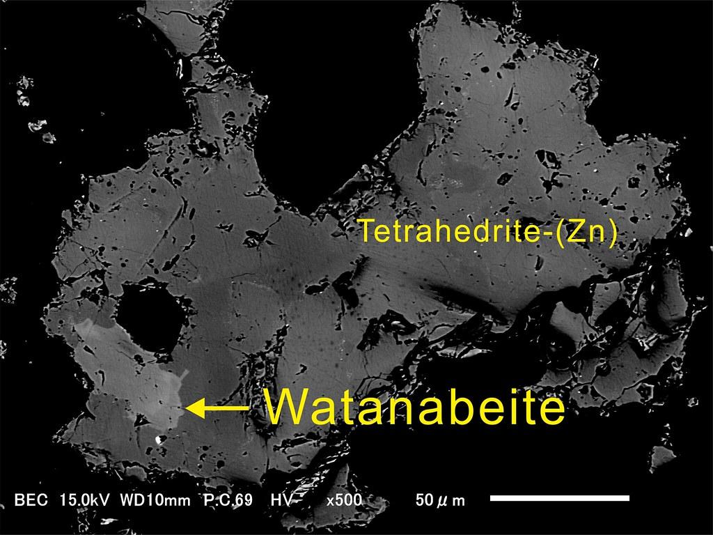 渡辺鉱&亜鉛面銅鉱 / Watanabeite & Tetrahedrite-(Zn)