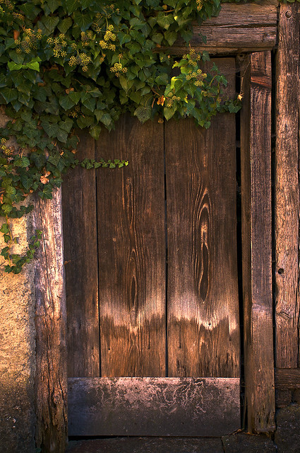 Pretty But Peculiar Door