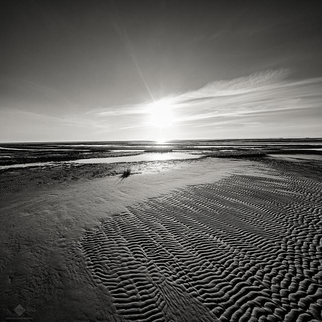 Frisian Sunrise #7