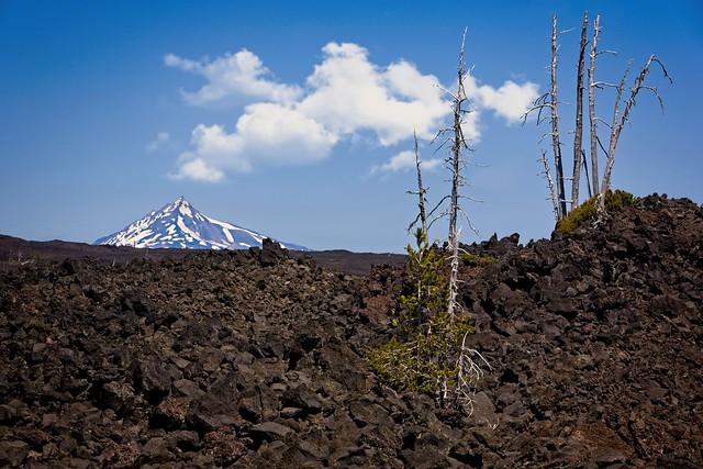 Mt Jefferson from McKenzie Pass Lava Field