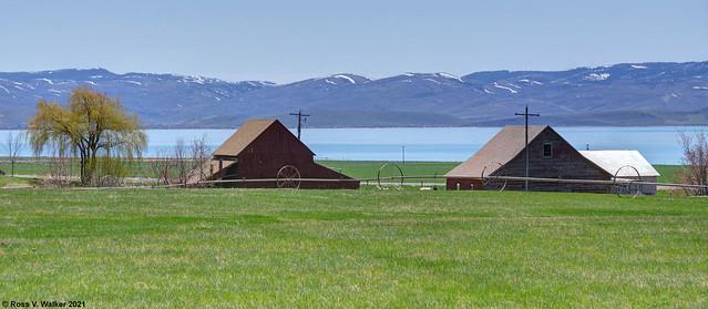 South Eden Barns