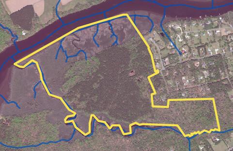 Satellite image of area along Choptank River