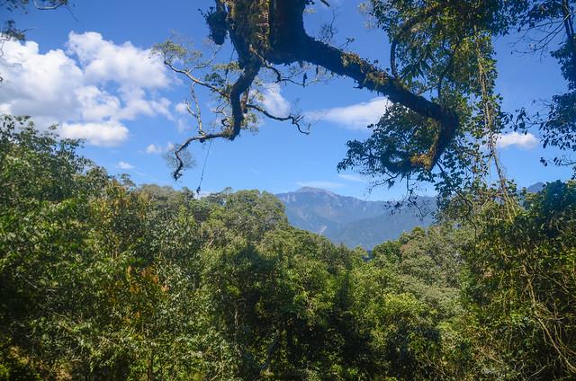 南我丹稜線巨木展望點東望關山 (2)