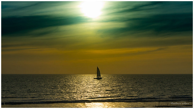 Navegando una dorada tarde de febrero // Sailing a golden afternoon in February.