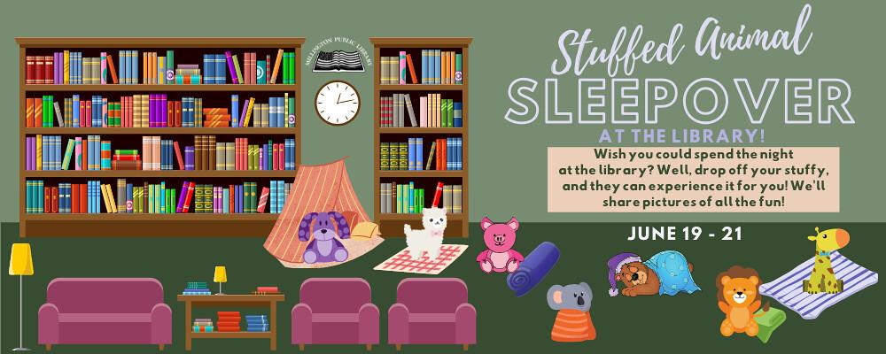 Stuffed Animal Sleepover Webslide