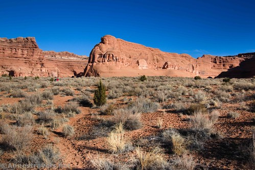 Walking cross-country (on a social trail) rather than taking the side-wash route, Arches National Park, Utah