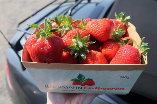 Erdbeeren von Böckmann