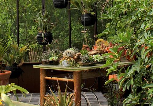 Douceurs jardinières 51176248988_3aae73102a