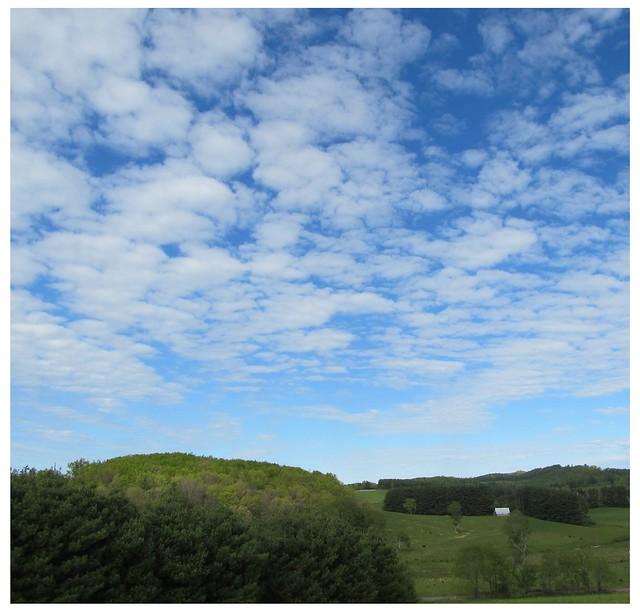 IMG_9893_Blue_Skies_May_12_2021