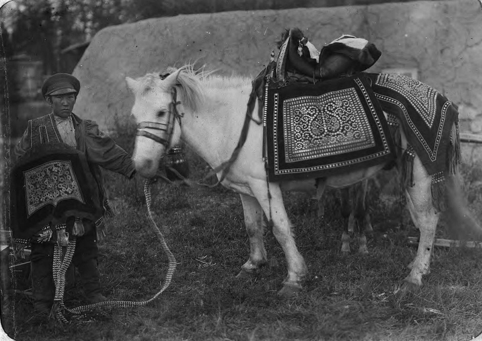 Лошадь в праздничной сбруе и наездник в торжественной одежде