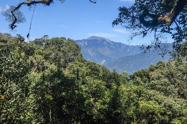 南我丹稜線巨木展望點東望關山 (3)