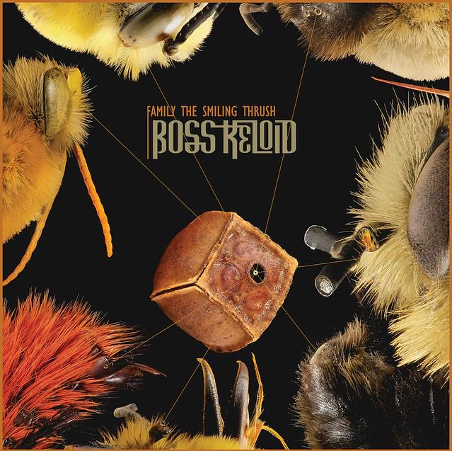 Boss Keloid Release Heartfelt New Single 'Smiling Thrush'