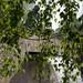Still auf dem Uni Campus Westend- Am Wasser-bw_20210513_6741.jpg