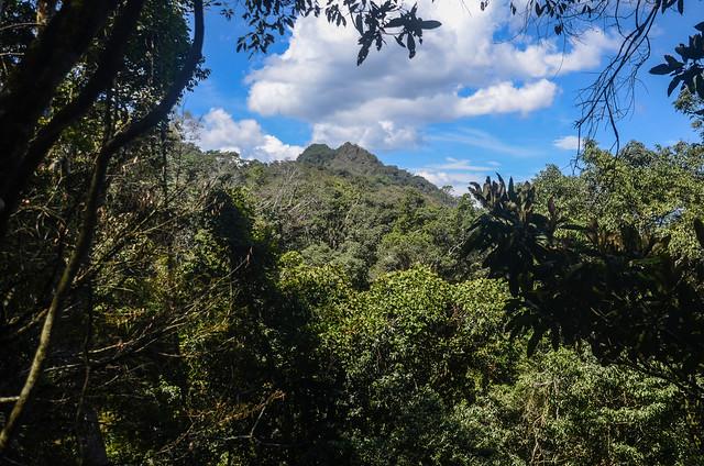 南我丹山稜線山景 (2)