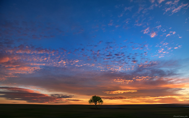 In the loneliness of a new day - En la soledad de un nuevo dia