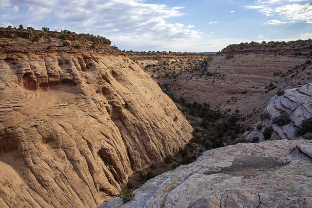 Meanders set in crossbedded sandstone