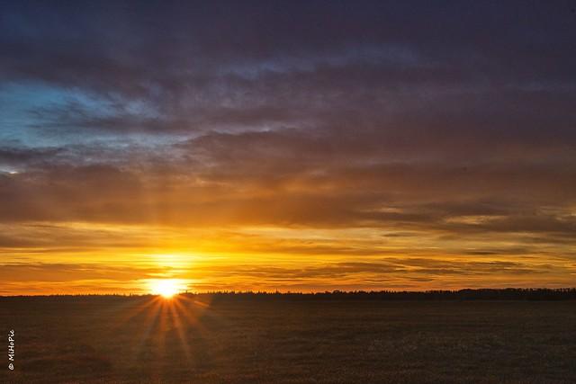 Sonnenaufgang auf dem Lechfeld